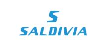 Logo Saldivia Buses